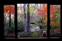masyuen_autumn_1_0074
