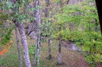 masyuen_autumn_1_0081