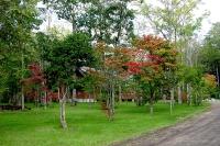 masyuen_autumn_1_0084