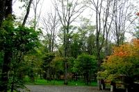 masyuen_autumn_1_0094