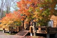 masyuen_autumn_1_0100