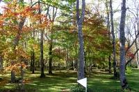 masyuen_autumn_2_0008