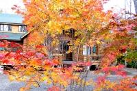 masyuen_autumn_2_0022