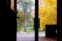masyuen_autumn_2_0023