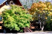 masyuen_autumn_2_0027