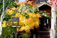 masyuen_autumn_2_0030