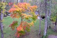 masyuen_autumn_2_0031