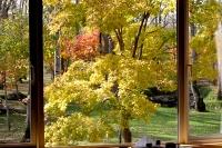 masyuen_autumn_2_0040