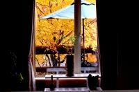 masyuen_autumn_2_0043