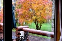 masyuen_autumn_2_0045