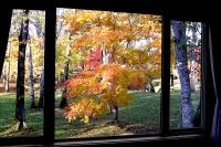 masyuen_autumn_2_0049