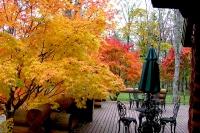 masyuen_autumn_2_0050