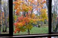 masyuen_autumn_2_0052