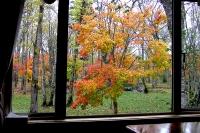 masyuen_autumn_2_0054