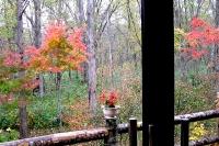 masyuen_autumn_2_0056