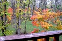 masyuen_autumn_2_0058