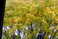 masyuen_autumn_2_0066