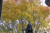 masyuen_autumn_2_0076