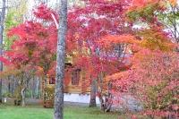 masyuen_autumn_3_0024