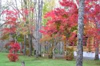 masyuen_autumn_3_0025