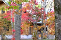 masyuen_autumn_3_0031