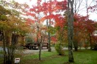 masyuen_autumn_3_0052