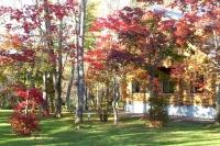 masyuen_autumn_3_0054