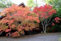 masyuen_autumn_3_0061