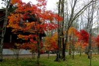 masyuen_autumn_6_0404