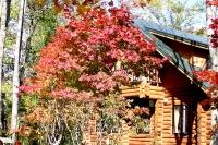 masyuen_autumn_6_0410