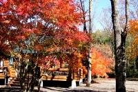masyuen_autumn_6_0411
