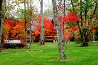 masyuen_autumn_6_0417