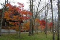 masyuen_autumn_6_0430