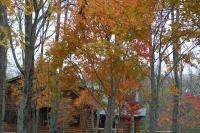 masyuen_autumn_6_0433