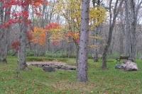 masyuen_autumn_6_0436