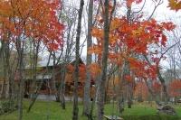 masyuen_autumn_6_0438