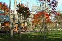 masyuen_autumn_8_0030