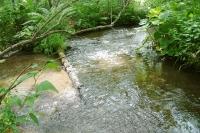 masyuen_river_0041