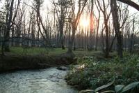 masyuen_river_0061