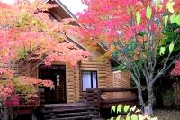 masyuen_autumn_3_0003