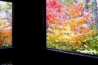 masyuen_autumn_3_0253