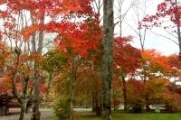 masyuen_autumn_4_0047
