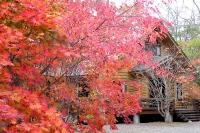 masyuen_autumn_5_0045